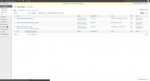 WordPress berichten - alle berichten - Handleiding WordPress door Compass Creations webdesign Gouda