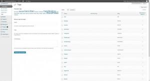 WordPress berichten - tags onderwerpen - Handleiding WordPress door Compass Creations webdesign Gouda